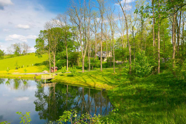 Briarwood Cabin - Views of the Fishing Pond