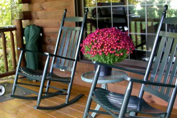 Apple Blossom Cabin - Porch
