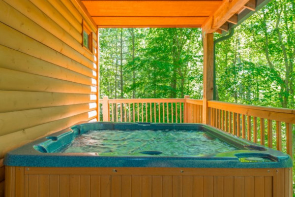 ... Sauna Creek   Porch And Hot Tub