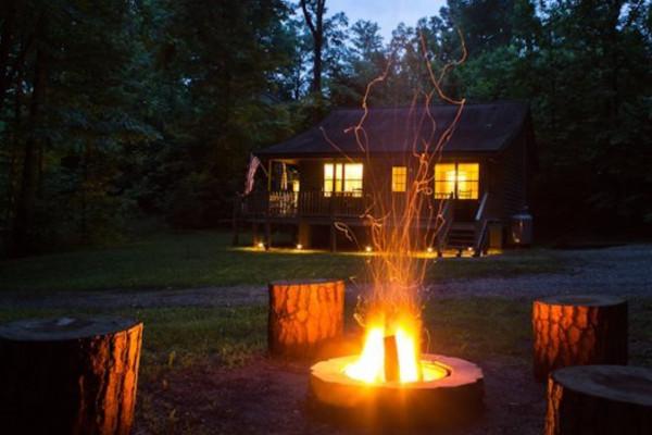 A Bear-able Cabin