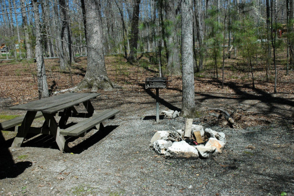 Family Cabins - Picnic Tables and Fire pit