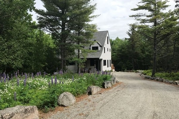 Driveway in Lupine