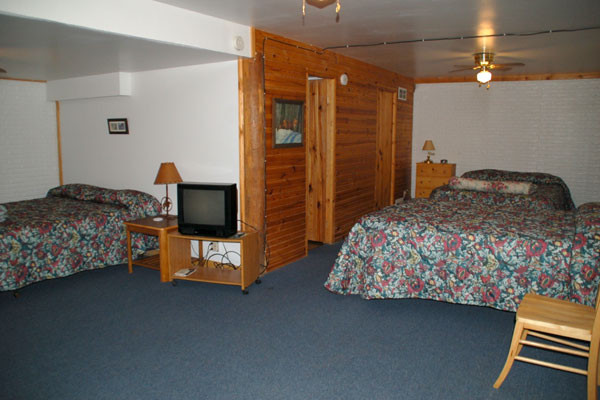 Downstairs Room with 2 Queens and Activity Area