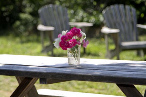 Picnic Table in Backyard
