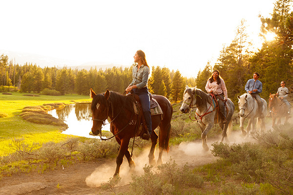 Grand Teton National Park Horseback Riding