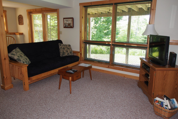 Lower Level - TV Room w/Futon