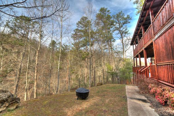 Backyard and Fire Pit
