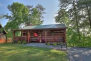 Abby's Treehouse #4003