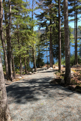 Driveway to Shore