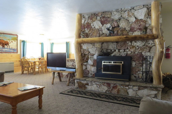 Warm Insert Fireplace