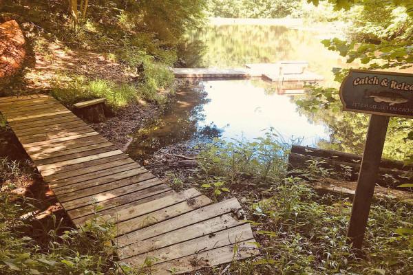 Adjacent Pond