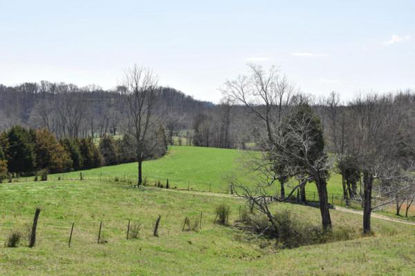 Nearby farms