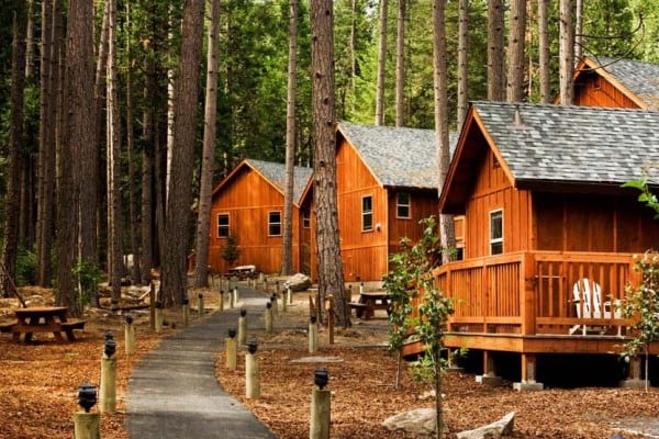 Book Family Cabin - One Bedroom, Yosemite National Park - All Cabins