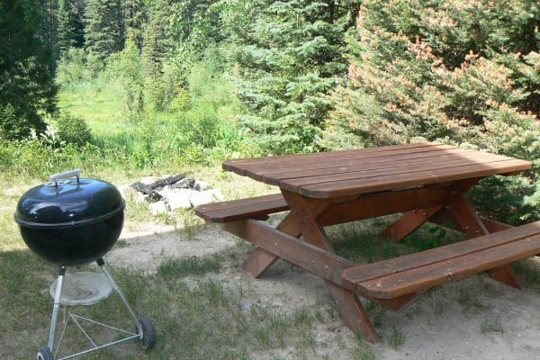 Picnic Table, BBQ and Fire Pit