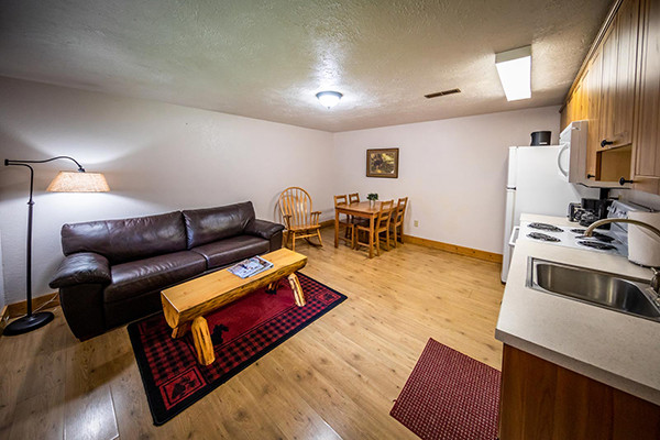 Twin Cabins - Living Room and Kitchen