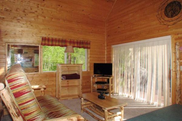 Aspen Cabin - Living Room