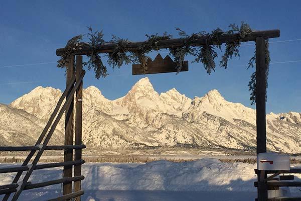 Teton Cabin Views