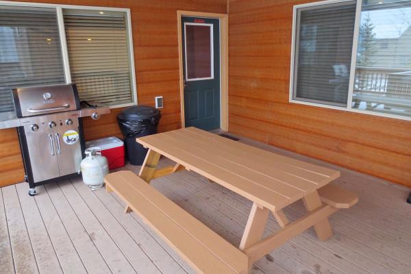 Porch Grill & Picnic Table