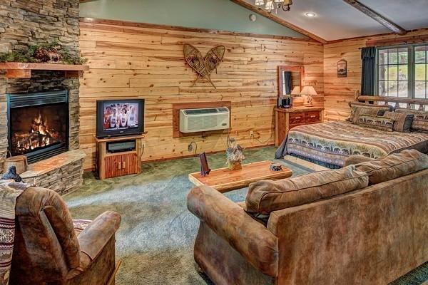 Bear Cub Living Room 2