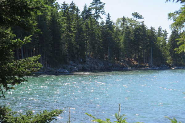 shore