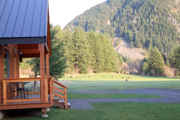 Wind River Cabin
