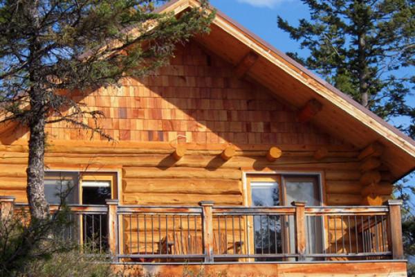 Blue Moon Cabin