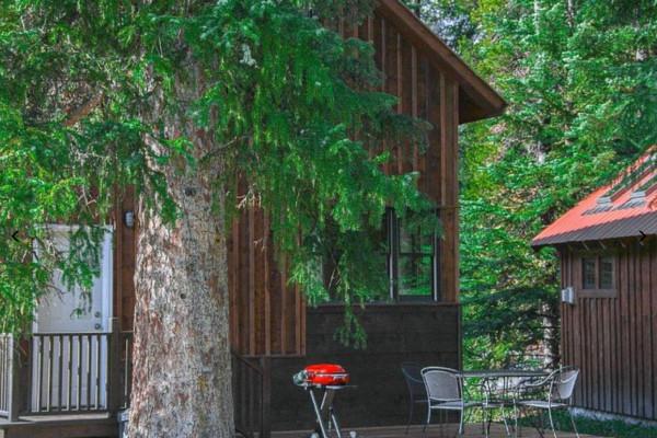 Lamar Cabin Back Porch
