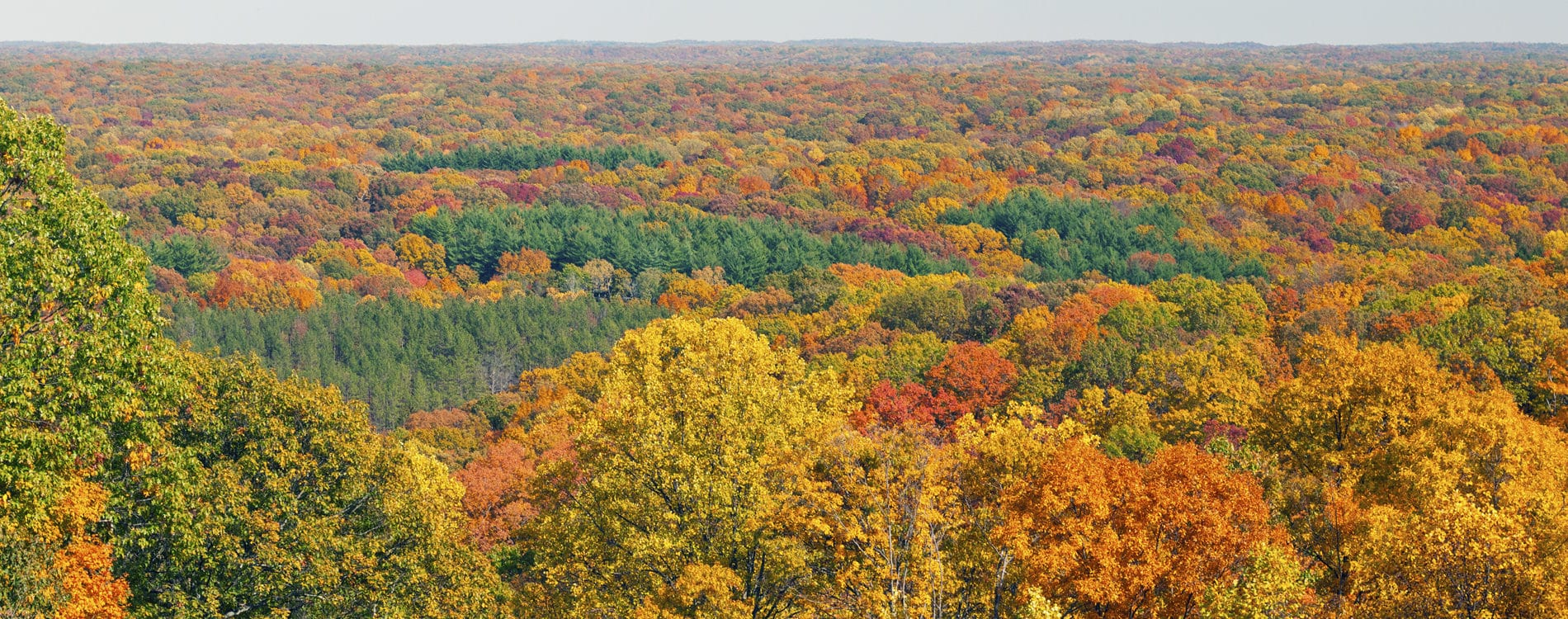 Aerial Autumn View of Brown County Indiana