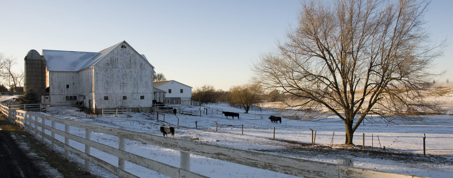 Amish Country, OH - Winter on an Amish Farm