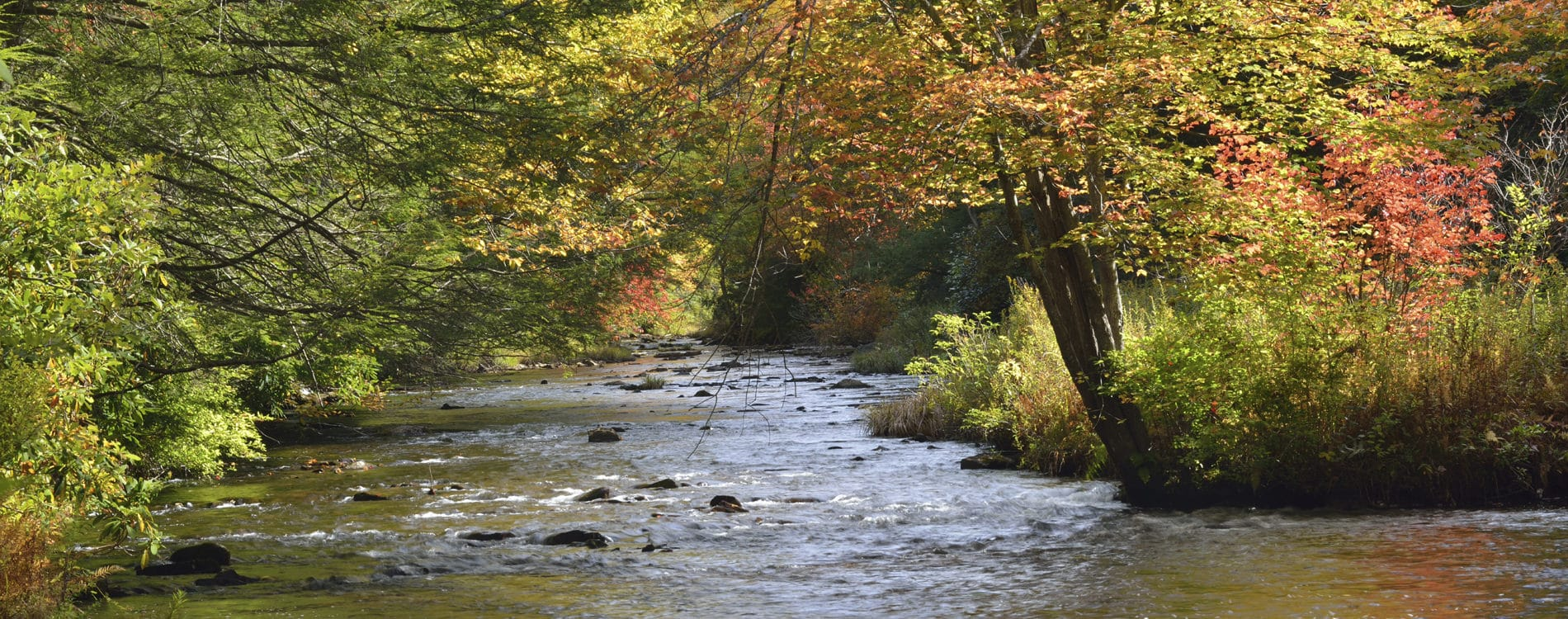 Panther Creek in Hickory Run State Park in the Poconos Pennsylvania
