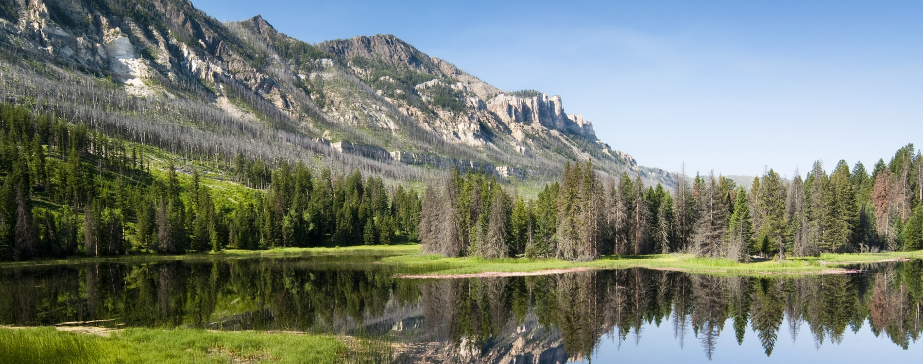 Chief Joseph Scenic Byway in the Absaroka Mountains