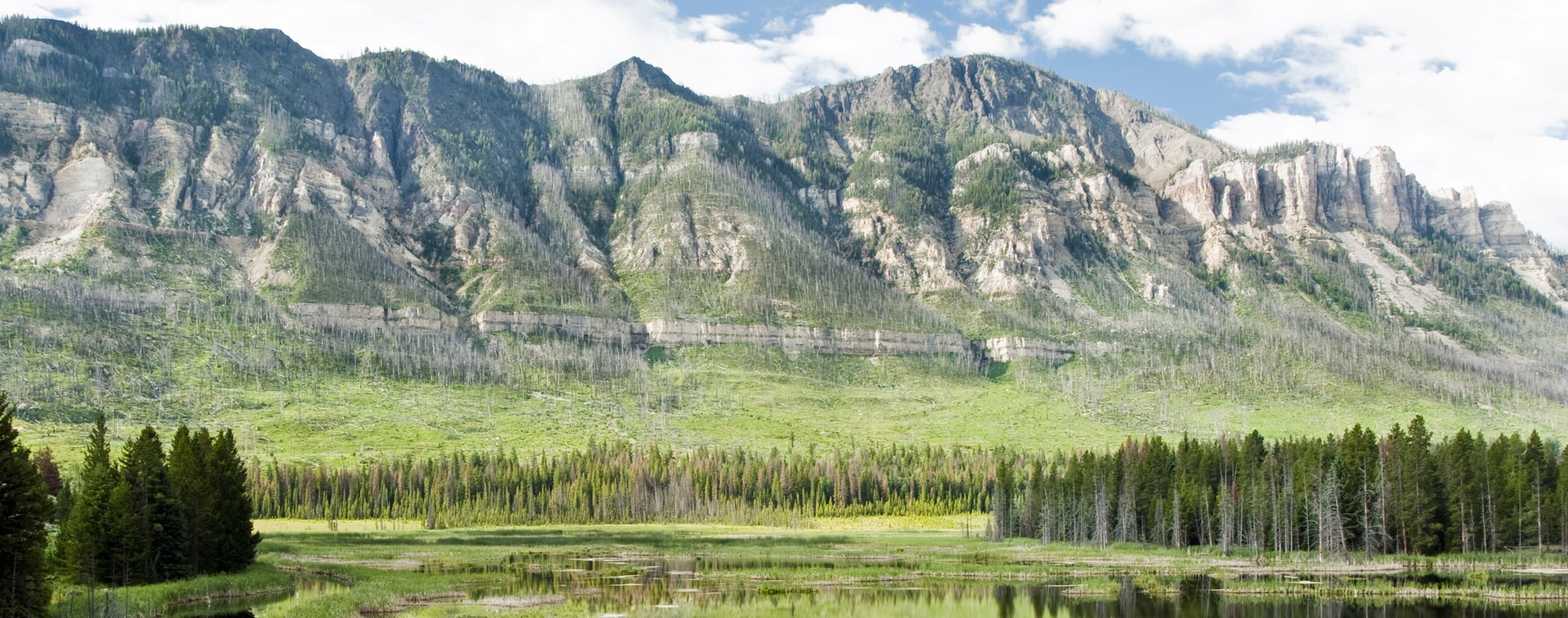 Shoshone National Forest along Chief Joseph Scenic Byway