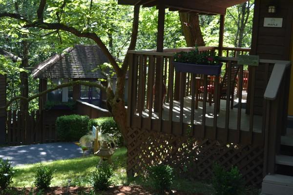 Cabin Decks