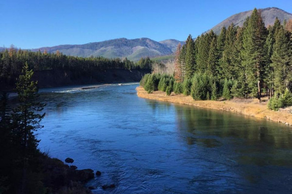 Nearby Flathead River