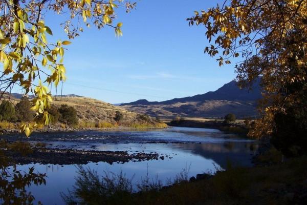 Fish the Yellowstone River