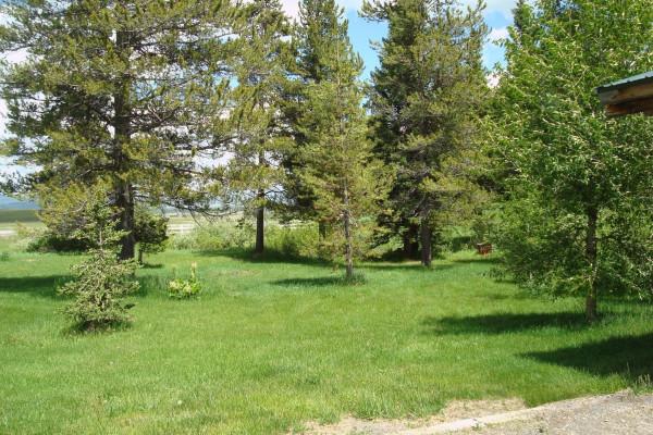Property Yard View