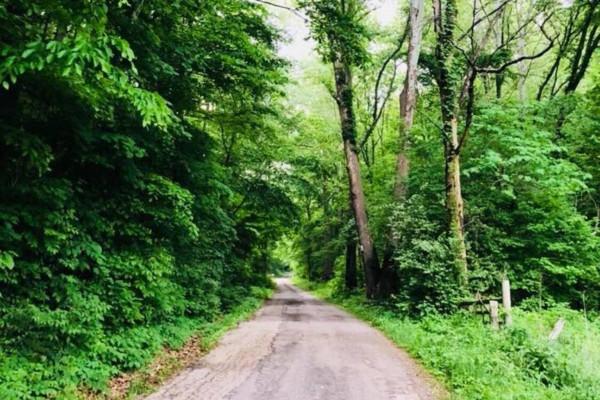 Private lane access