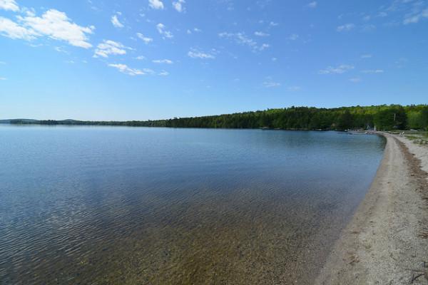 Shoreline of Pond